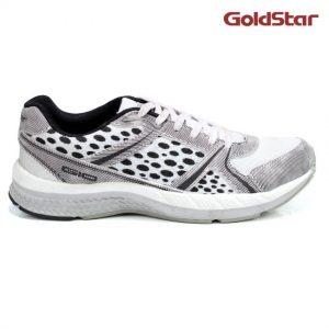 goldstar-1095-1831471-1-zoom1100