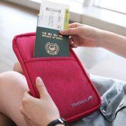 passport bag1