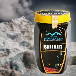 Divine Himalayan Shilajit
